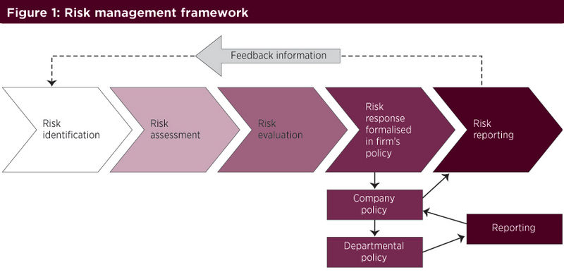 Fig1 risk management framwork.jpg